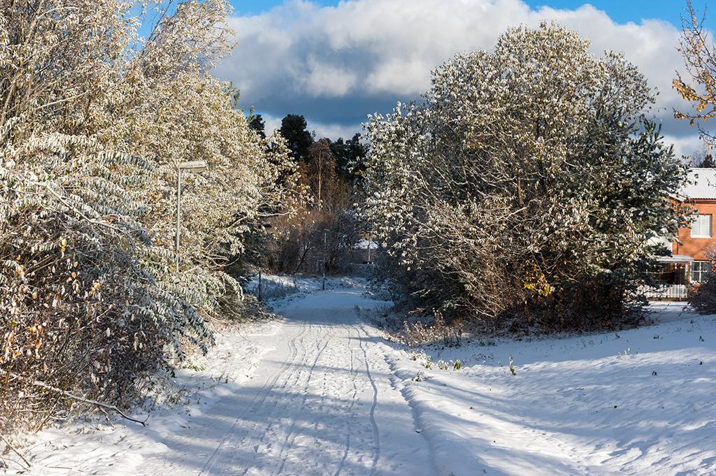 Vackert med snön
